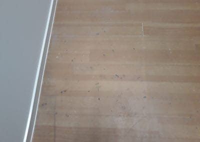 Indoor cleaning dirty light timber floor boards